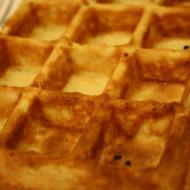 Restaurant Review: Waffle Frolic, Ithaca, NY
